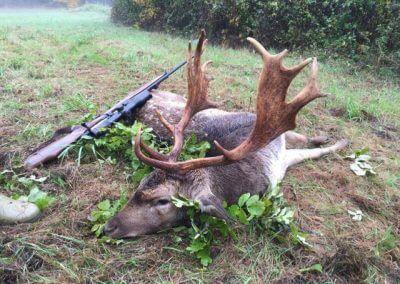 Úspešný lov - daniel